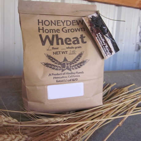 Organic Sonora Whole Wheat Flour